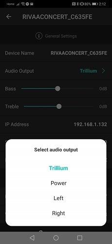 Riva Voice App Audio Output