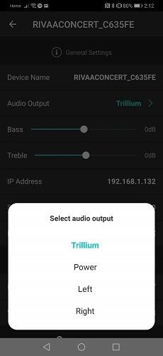 Riva Voice App Audio Output
